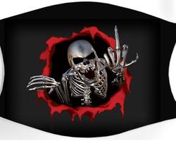 Crâne 6