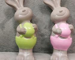 0015 Couple lapin vert/rose