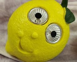 0005 Citron