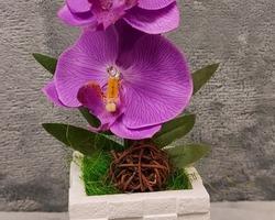 0005 Pot blanc avec fleur mauve (lumineux)