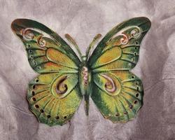 0007 papillon cadre V