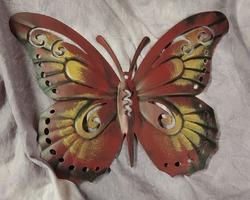 0008 papillon cadre