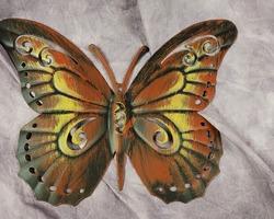 0009 papillon cadre