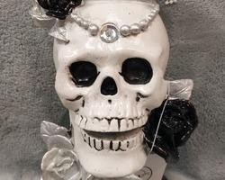 Article 0029 crâne couronne