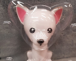 Article 0004 Chihuahua solaire
